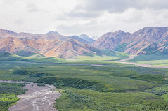 Polychrome Overlook (ChiiPicts) Tags: denali denalinationalpark mountains landscape river rivervalley alaska usa outdoor