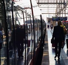In Transit III (StockQuant) Tags: none rokkor 50mmf17 sonyalpha6000 frankfurt germany train station hauptbahnhof