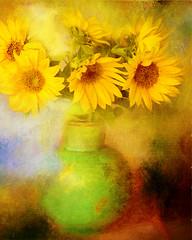 Hot summer (BirgittaSjostedt) Tags: sunflower flower garden nature plantpot still texture painting paint birgittasjostedt magicunicornverybest ie ~themagicofcolours~xv