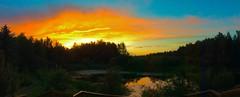 Hot lips (peggyhr) Tags: peggyhr sunset clouds trees slough railing orange green black blue white bluebirdestates alberta canada 7millionviews thelooklevel1redaddphotos thegalaxy thelooklevel2yellow 30faves~ super~sixbronzestage1 thegalaxyhalloffame super~sixstage2silver thelooklevel3orange thelooklevel4purple