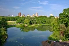 Central Park-Turtle Pond, 05.25.15 (gigi_nyc) Tags: centralpark spring springincentralpark nyc newyorkcity turtlepond