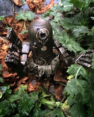 WWRP Bertie Jungle Hike (Aaron (-_-)) Tags: threea wwrp bertie