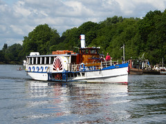 Yarmouth Belle passing Petersham Meadows (Gilder Kate) Tags: englishsidewheeler 1892 paddleboat thethames thames riverthames river july path thamespath hightide yarmouthbelle petershammeadows pleasureboat panasoniclumixdmctz70 panasoniclumix panasonic lumix dmctz70 tz70