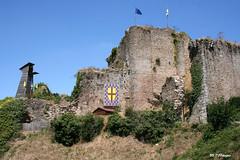 85 Tiffauges - Château (Herve_R 03) Tags: france castle architecture château vendée paysdeloire