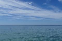 Blue (Elsie esq.) Tags: englishchannel sea sussex undercliff