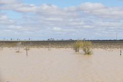 Travelling on the road to Longreach... (The Pocket Rocket) Tags: roadtolongreach floods queensland australia landsboroughhighway