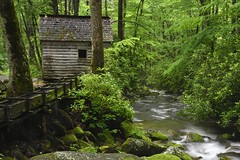 Tub Mill on the Roaring Fork Motor Nature Trail, Great Smoky Mountains National Park (jkrieger84) Tags: landscape nature nikon d500 tubmill water greatsmokymountainsnationalpark mill smokies