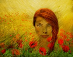 Amapola (amalia lampri) Tags: digitalcreation fineart faces women inspiration amapola poppies wallpaper textures