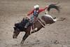 RODEO (elizabethsummerley) Tags: winner alt rodeo cs calgary calgarystampede photojournalism nikon cowboy bucking bronco horses rope