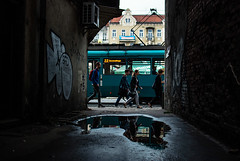 338/365 BFD (ewitsoe) Tags: 365 ewitsoe puddle relflection street urban city poznan poland water rain puddles reflection people pedestrians walking tram traffic summer morning feelslikefall whathappendtosummer green jezyce wet nikond80 35mm citylife life