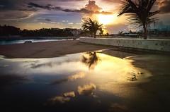 Coast of Cap Cana Marina, Punta Cana (ROCIO Ysapy) Tags: reflection sunset palm trees marina puntacana dominicanrepublic travel summervacation familyvacations