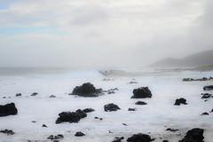 DSC_6512 (reflective perspicacity) Tags: hawaii oahu july2016 nikond300 lanikaibeach waimanalo kailua honolulu ocean pacificocean