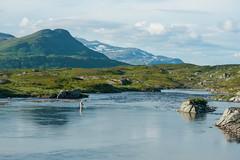 P7250830 (vekkan) Tags: borgefjell norja vaellus