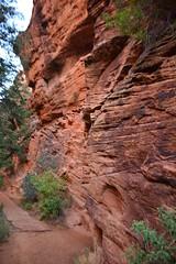 GEM_2951 (Gregg Montesi) Tags: zion national park angels landing