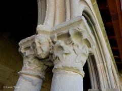 Saint-Hilaire - Abbaye - Clotre (Fontaines de Rome) Tags: aude sainthilaire saint hilaire abbaye clotre