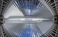 The Oculus Wide Pano (Wallace Flores) Tags: d4s nikon newyorkstate newyorkcity lowermanhattan worldtradecenter theoculus oculus