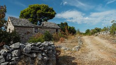 The Old Croatian Farmhouse (sramses177) Tags: dvori farmhouse stonehouse stonewall landscape croatia primosten europe agriculture summer pinetree pine tree outdoor decay ruin pathway road olympus 1240mm omd architecture building clouds sky