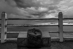 DSC01454 (Damir Govorcin Photography) Tags: monument hundred years life saving bondi beach sydney clouds sky zeiss 1635mm sony a7ii water