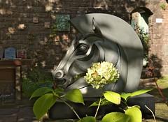 Trojan Horse (elhawk) Tags: wyndcliffecourt sculpturegarden sculpture trojanhorse