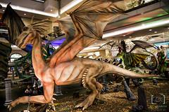 Dragon (renato_de_camargo@yahoo.com.br) Tags: drago