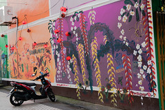 murales (VioletHippie) Tags: malaysia borneo island travel nationalgeographic foto photo nikon nikond750 d750 etnical place steetart artedistrada murales coloro colour kuching day night giorno notte