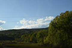 DSC_0313 (DanesBlankie) Tags: boston vermont trees green woods sky sun family fun adventure david bowie prince baseball red sox