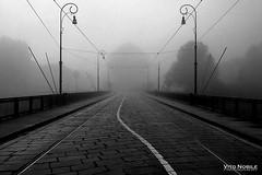 nebbia (vito.nobile) Tags: nebbia fog torino turin italia pavimento stop fiume ponte bridge