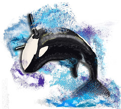killer whale dance (neku.chou) Tags: killerwhale killerswhales orque orca digitaldraw digital art draw dessin photoshop