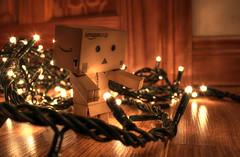 Danbo Checking Christmas Lights (Glenn Cartmill) Tags: christmas decorations cute japanese lights character decoration manga christmastime dabo yotsuba amazoncojp danbooru amazonjapan danboard cardbo danboru amazondanboard glenncartmill