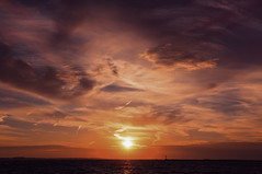 As I See it (joegeraci364) Tags: ocean morning sea sky cloud sun seascape color art beach nature water weather rock start altered sunrise print landscape outdoors photography dawn coast photo ray peace image connecticut horizon fine scenic calm shore zen borough serene spiritual renewal daybreak renew stonington