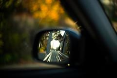 Wing Mirror (moaan) Tags: leica trip dog car japan 50mm drive dof bokeh f10 kobe jp utata mp noctilux sideviewmirror welshcorgi hyogo 2014 leicamp pochiko thelittledoglaughed leicanoctilux50mmf10 type240