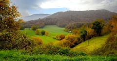 _DSC7189 (andoni.guridi) Tags: autumn fall spain otoño navarra 2014 basaburua