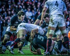 Scotland v England (FotoFling Scotland) Tags: game edinburgh rugby murrayfield international match sixnations seanlamont
