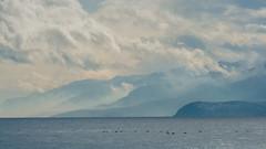 Lake Ohrid II