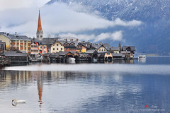 哈修塔特湖 Hallstatt (愚夫.chan) Tags: austria 教堂 奧地利 2014 hallstatt 天鵝 遊艇 哈修塔特湖
