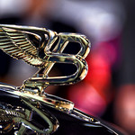 Bentley Wings thumbnail