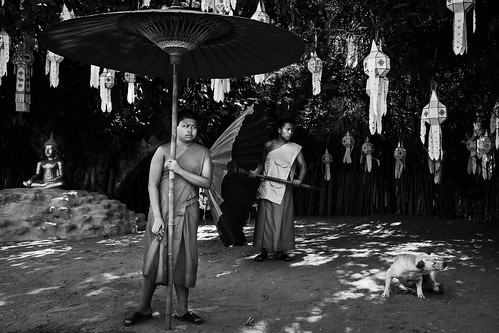 Young monks with parasols