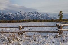 IMG_7264 (rjfinch61) Tags: snow mountains sunrise tetons