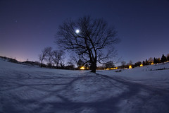 Shadows of Moonlight (Radical Retinoscopy) Tags: winter shadow moon snow tree silhouette night canon pennsylvania branches wideangle fisheye pa astrophotography orion lancaster moonlight astronomy lancastercounty snowfall wintersky perseus constellation lancasternight canoneost2i canon815mm lancasternightphotography shadowsofmoonlight