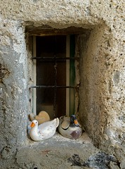 finestrella (Irene Grassi (sun sand & sea)) Tags: windows window heart finestra montagna cuore papere sasso finestrella