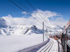 Gornergratbahn (Dominique Schreckling) Tags: schweiz switzerland suisse gornergrat zermatt wallis valais 2015 645z