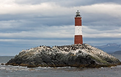 Imperial cormorants and lighthouse Les Eclaireurs (end of the world), Beagle Channel boat trip, Argentina (Miche & Jon Rousell) Tags: chile sea patagonia lighthouse southamerica argentina del andes channel endoftheworld leseclaireurs ushuaiatierra fuegobeagle