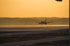 All Nippon Airways Boeing 767-300 JA8674 landing on Kobe Airport(UKB/RJBE) (kimtetsu) Tags: japan airplane ana airport aircraft aviation kobe  boeing  ukb  b767   allnipponairways  kobeairport   rjbe