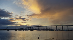 Coronado Bridge, Coronado, CA (larisavoronina) Tags: sunrise sandiego approved thebay coronadobridge