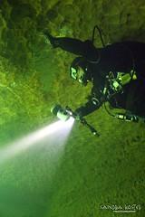 IMG_5949 (2) (SantaFeSandy) Tags: giant snapper turtle cave diving sinks lafayette blue springs state park sandrakosterphotography sandrakosterphotographycom sandykoster sandy sandra santafesandysandrakosterphotographycom sandrakoster algae green sink stevens 1 snake