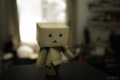 (yuyustudio) Tags:  danboard 5diii ef1635mm bokeh soft light flash toy