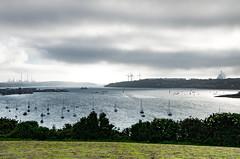 Cleddau Estuary - Pembroke Dock-9 (johnlawson367) Tags: boats britain cleddau cleddaubridge estuary industry landscape neyland pembrokedock pembrokeshire refinery uk wales windmill