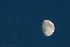 waxing gibbous moon (sure2talk) Tags: moon waxinggibbous waxinggibbousmoon evening night nightphotography nikond60 nikkor70300mmf4556afsifedvr