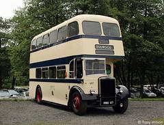 Sheffield 687 Leyland (Copy) (focus- transport) Tags: dennis loline bristol half cab daimler fleetline gmpte transport aec leyland atlantean re renault vr