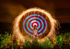 Mrs. Thistle 2016 :P (MAGIC PASSION * PHOTOGRAPHY *) Tags: magicpassionphotography creative night light art photography lightpainting longexpo crackling firework thistle distel langzeitbelichtung lichtmalerei